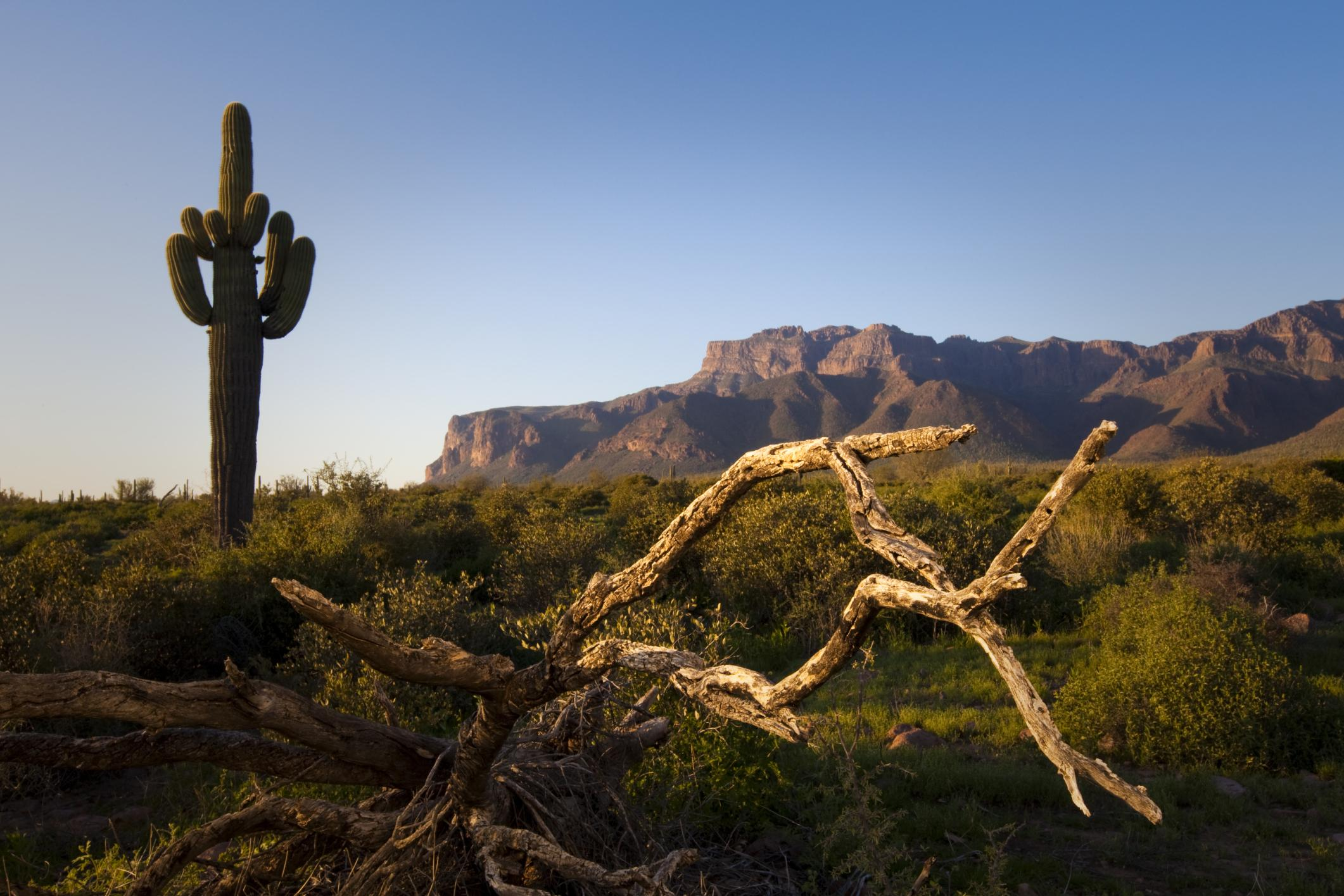 Superstition Mountains - Apache Junction